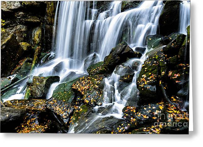 Wolf Creek Greeting Cards - Wolf Creek Falls Greeting Card by Thomas R Fletcher
