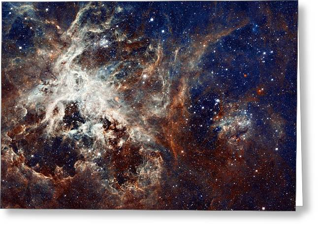 Constellations Greeting Cards - 30 Doradus Greeting Card by Ricky Barnard