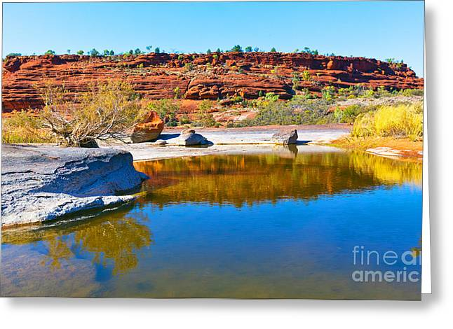Palm Valley Central Australia  Greeting Card by Bill  Robinson