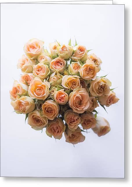Indoor Still Life Greeting Cards - 30 Roses Greeting Card by Shelby  Young