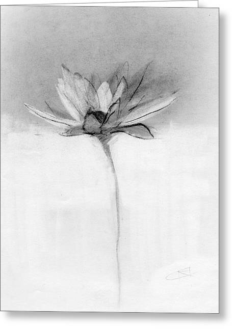 Petals Greeting Cards - RCNpaintings.com Greeting Card by Chris N Rohrbach