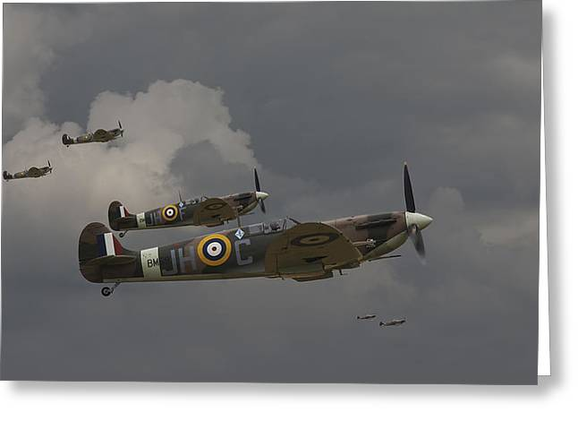 Spitfire Greeting Cards - 317 Polish Squadron Greeting Card by Pat Speirs