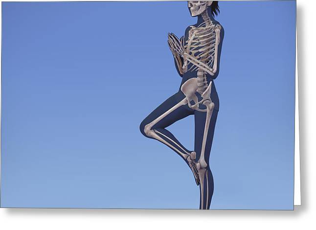Biomedical Illustrations Greeting Cards - Yoga Tree Pose Greeting Card by Science Picture Co