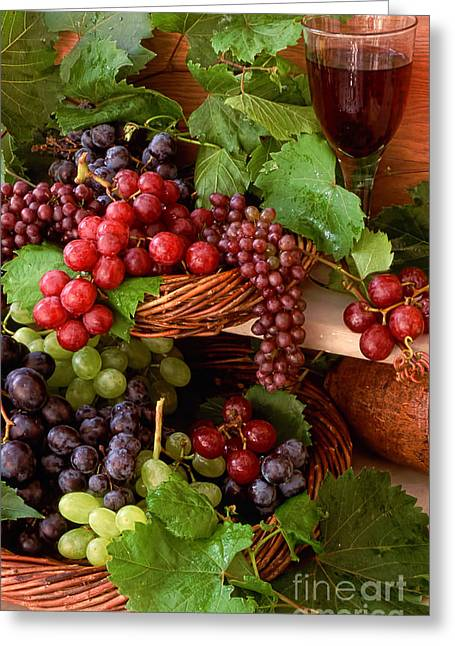 Grape Vineyard Greeting Cards - In a vineyard Greeting Card by Indian Summer