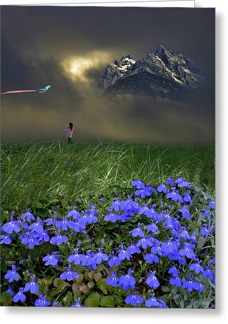 Kites Greeting Cards - 3316 Greeting Card by Peter Holme III