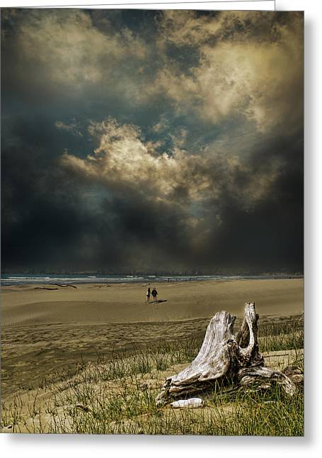 Driftwood Beach Greeting Cards - 3340 Greeting Card by Peter Holme III