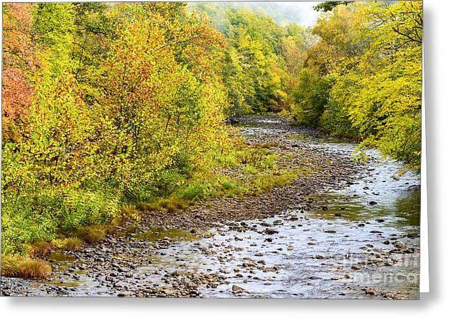 West Fork Greeting Cards - Williams River Autumn Greeting Card by Thomas R Fletcher