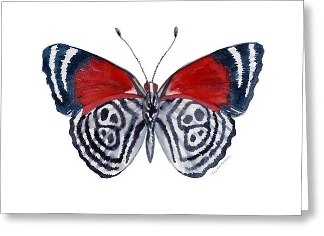 Background Paintings Greeting Cards - 37 Diathria Clymena Butterfly Greeting Card by Amy Kirkpatrick