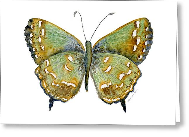Background Paintings Greeting Cards - 38 Hesseli Butterfly Greeting Card by Amy Kirkpatrick