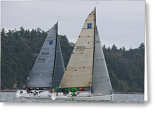 Whidbey Island Greeting Cards - Whidbey Island Race Week Greeting Card by Steven Lapkin