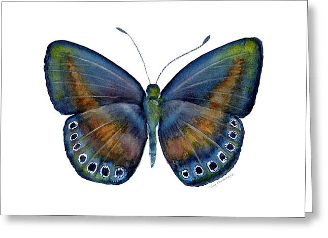 Background Paintings Greeting Cards - 39 Mydanis Butterfly Greeting Card by Amy Kirkpatrick