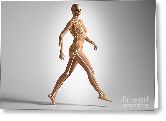 Costae Fluitantes Greeting Cards - 3d Rendering Of A Naked Woman Walking Greeting Card by Leonello Calvetti