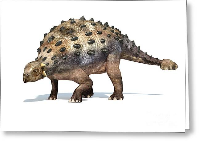 Ankylosaurus Digital Greeting Cards - 3d Rendering Of An Ankylosaurus Greeting Card by Leonello Calvetti