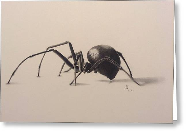 Black Widow Drawings Greeting Cards - 3D Spider Greeting Card by Aaron Ingle