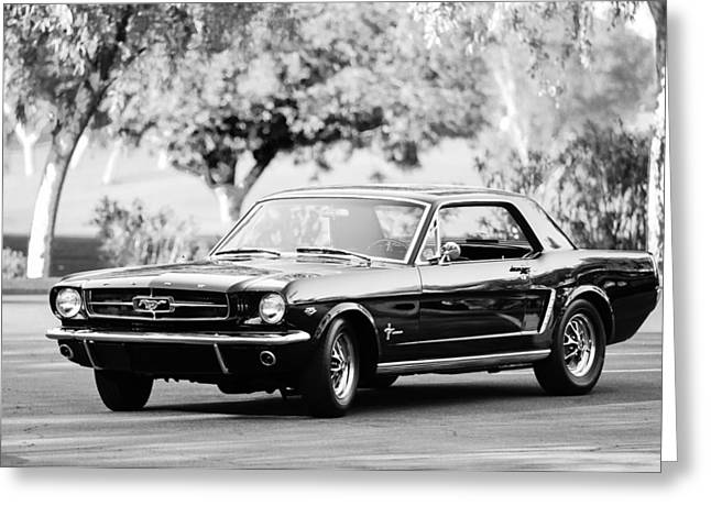 American Muscle Car Greeting Cards - 1965 Shelby Prototype Ford Mustang  Greeting Card by Jill Reger