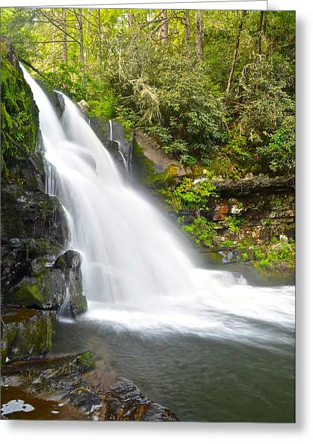Roaring Falls Greeting Cards - Abrams Falls Greeting Card by Frozen in Time Fine Art Photography