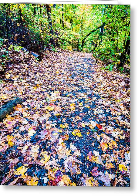 Lake Wylie Greeting Cards - Autumn Country Road Greeting Card by Alexandr Grichenko
