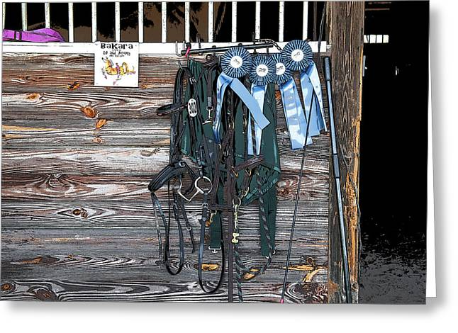 Dressage Photographs Greeting Cards - 4 Blue Ribbons Oh My  Greeting Card by Rich Franco