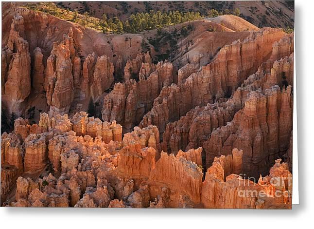 Southern Utah Greeting Cards - Bryce Canyon National Park, Ut Greeting Card by Sean Bagshaw
