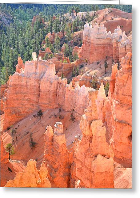 Thor Greeting Cards - Bryce Canyon Greeting Card by Ray Mathis