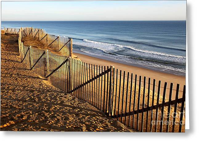 Cape Cod Tourism. Greeting Cards - Cape Cod National Seashore Greeting Card by Denis Tangney Jr