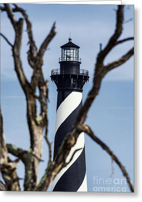 Cape Hatteras Lighthouse Greeting Cards - Cape Hatteras Lighthouse Greeting Card by John Greim