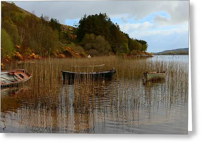 Walsh Lake Greeting Cards - Caragh Lake Greeting Card by Barbara Walsh