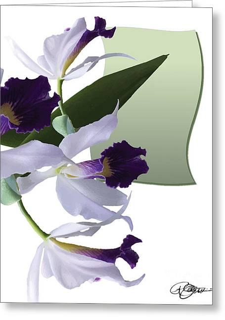 Cattleya Digital Art Greeting Cards - Cattleya Valentine Triage dafoi Art 1 of 3  Greeting Card by Ruth  Benoit