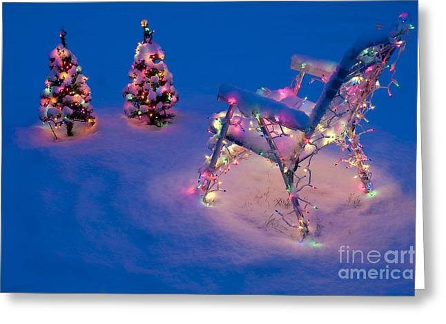 Lawn Chair Greeting Cards - Christmas Lights on Trees and Lawn Chair Greeting Card by Jim Corwin