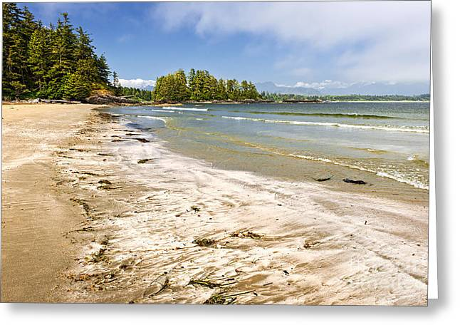 British Columbia Greeting Cards - Coast of Pacific ocean on Vancouver Island Greeting Card by Elena Elisseeva