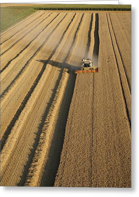 Agronomy Greeting Cards - Combine Harvesters At Work Greeting Card by Laurent Salomon