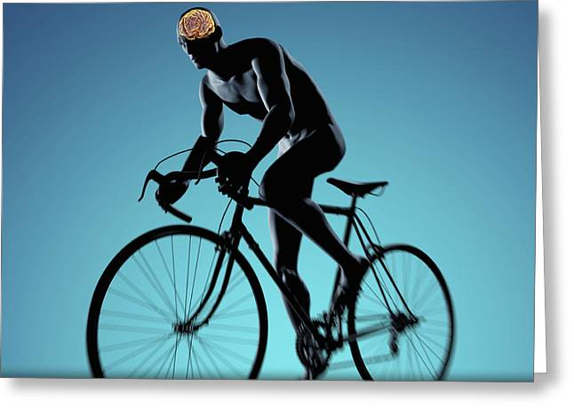 Physical Body Greeting Cards - Cycling Greeting Card by Science Picture Co