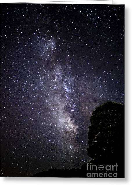 Star Field Greeting Cards - Dark Rift of the Milky Way Greeting Card by Thomas R Fletcher