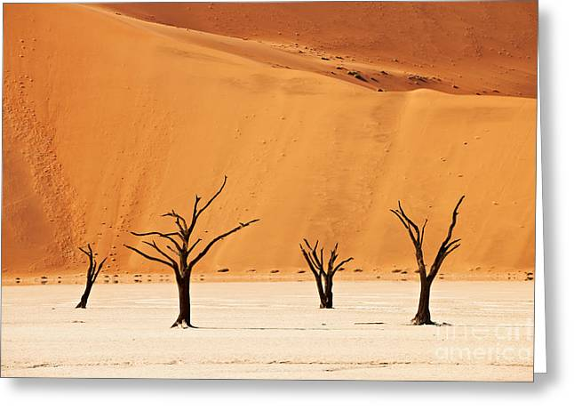 Fotografie Greeting Cards - Dead Vlei in Namib Desert Greeting Card by Juergen Ritterbach