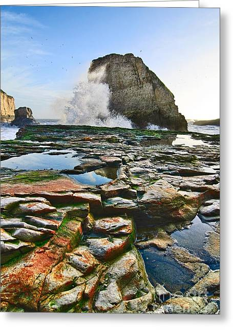 Monolith Greeting Cards - Dramatic view of Shark Fin Cove in Santa Cruz California. Greeting Card by Jamie Pham