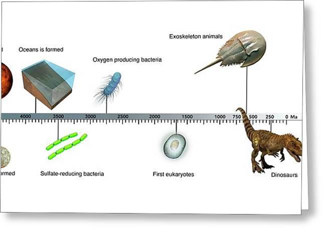 Evolution Of Earth Timeline Greeting Card by Mikkel Juul Jensen