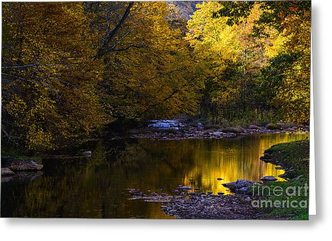 Late Fall Greeting Cards - Fall Color Gauley River Headwaters Greeting Card by Thomas R Fletcher