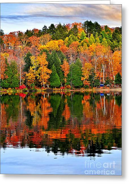 Algonquin Greeting Cards - Fall forest reflections Greeting Card by Elena Elisseeva