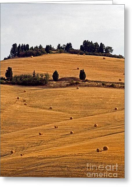 Hay Bales Greeting Cards - Farmhouse, Tuscany, Italy Greeting Card by Tim Holt