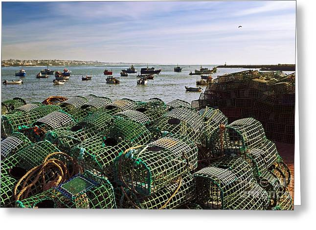 Pot Boat Greeting Cards - Fishing Traps Greeting Card by Carlos Caetano