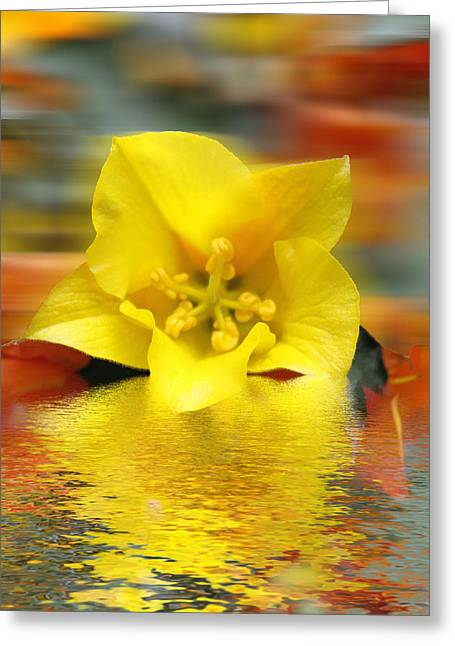Pink Gold Flora Greeting Cards - Floral Fractals and Floods Digital Art Greeting Card by David French