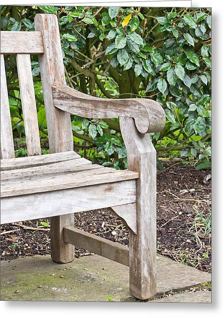 Weekend Photographs Greeting Cards - Garden bench Greeting Card by Tom Gowanlock