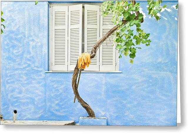 Blue Grapes Greeting Cards - Greek house Greeting Card by Tom Gowanlock
