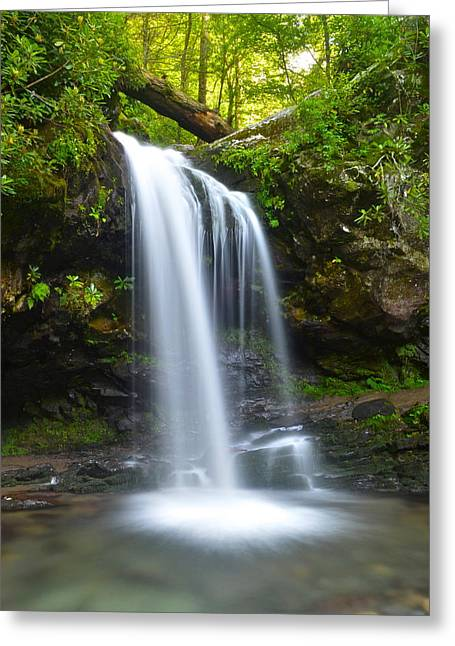 Roaring Falls Greeting Cards - Grotto Falls Greeting Card by Frozen in Time Fine Art Photography