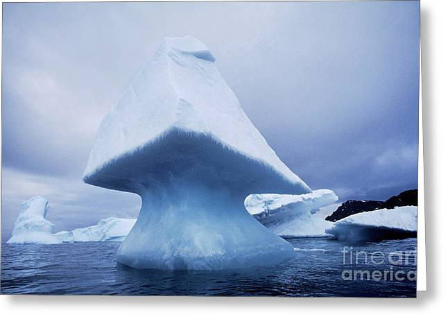 Abstract Shapes Greeting Cards - Icebergs Greeting Card by Art Wolfe
