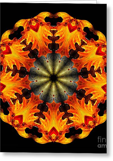 Abstract Sunburst Greeting Cards - Kaleidoscope of Blown Glass Greeting Card by Amy Cicconi