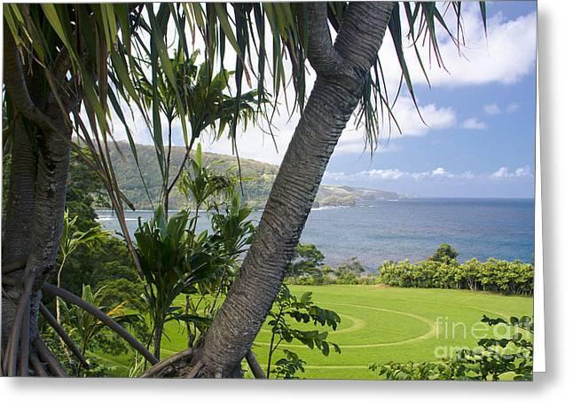 Lauhala Greeting Cards - Keanae Maui Hawaii Greeting Card by Sharon Mau