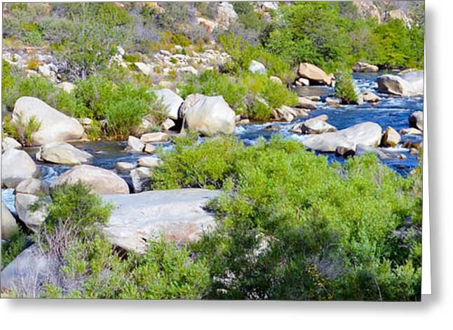 Artistic Photography Greeting Cards - Kern River Study Greeting Card by Barbara Snyder