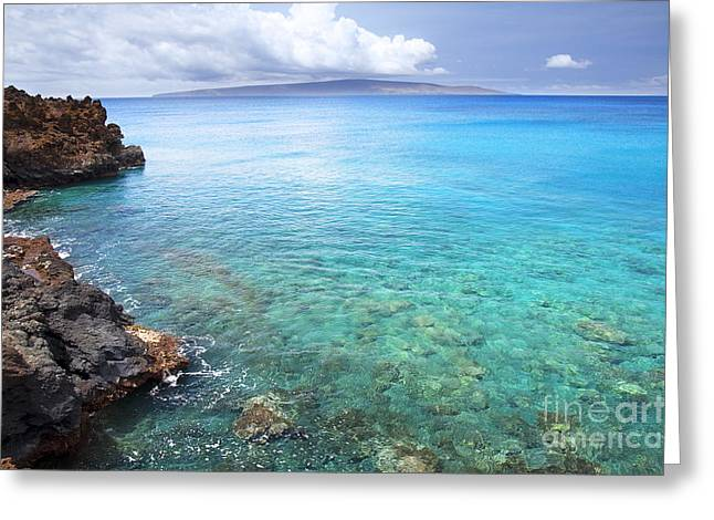 La Perouse Bay Greeting Cards - La Perouse Bay Greeting Card by Jenna Szerlag
