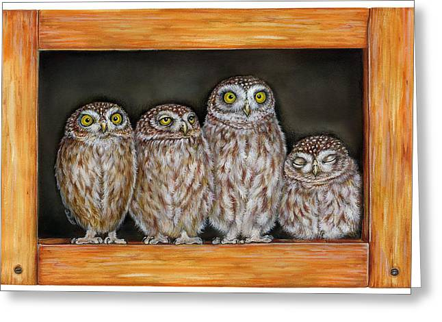 Naturalistic Greeting Cards - 4 Little Owls Greeting Card by Marina Durante